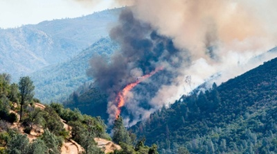 Forest-fire-and-health-care-evacuations.jpg